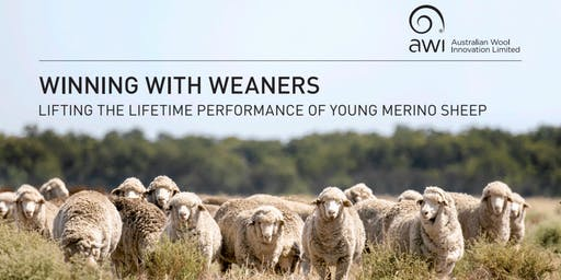 Winning with Weaners - Hamilton