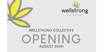 Wellstrong Collective Open Night