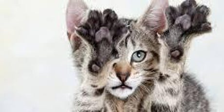 Feline Rescue Cat Claw Clipping Clinic tickets