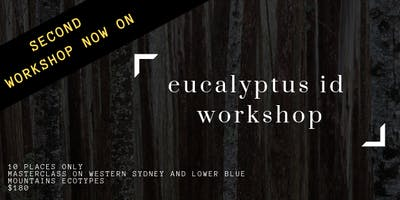 Eucalyptus ID workshop #2
