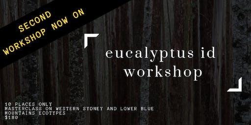 Eucalyptus ID workshop #2