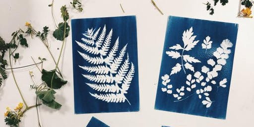 Introduction to Cyanotype Printing