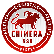 CHIMERA SSDRL logo