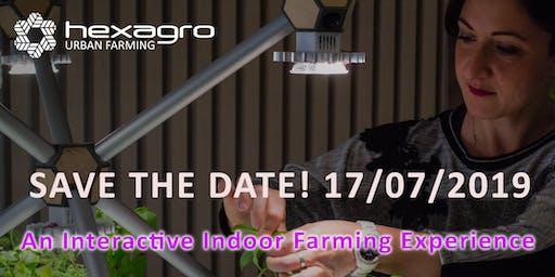 An Interactive Indoor Farming Experience @NovotelMilano