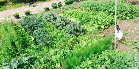 Vegetable Growing Materclass tickets