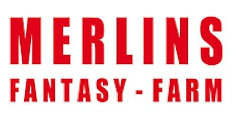 Merlins Fantasy Farm tickets
