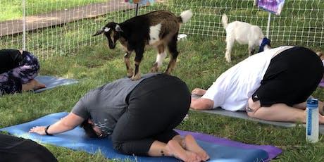 Sweeney Hill Farm Goat Yoga - July 21 tickets