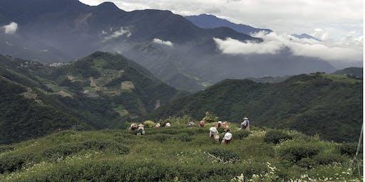 Thee, Zon en Maan:  Taiwanees parcours, etappe 2