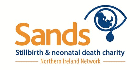 Sands Northern Ireland Networking Day tickets