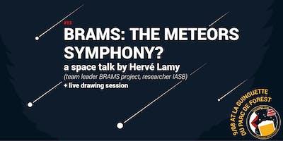 TCtM #13 BRAMS: the meteors symphony?