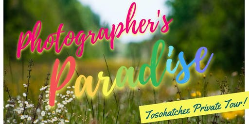Photographer's Paradise- Taking Pictures for Florida Fish and Wildlife! Fall Edition
