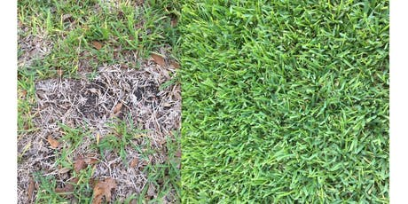 Fall Lawn Care with Texas A & M tickets