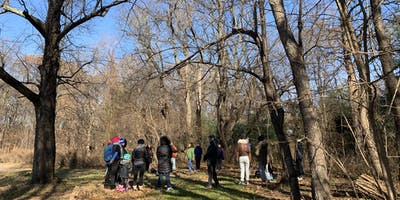 Forest Bathing in Forest Park, Queens