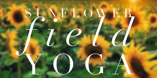 Sunflower Field Yoga, Cynthiana KY