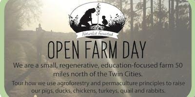 Naturalist Farmstead Open Farm Day
