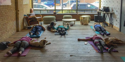 Doga at Hewing Hotel Yappy Hour (yoga with your dog!)