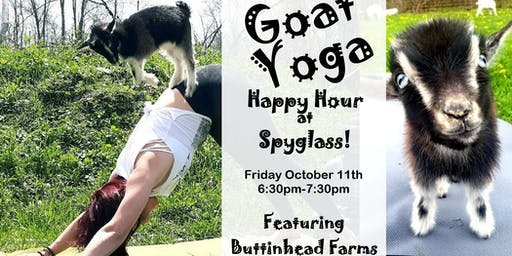 Goat Yoga Happy Hour at Spyglass Ridge Winery