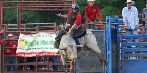 Betsworth Bull Bash at the Douglas County Fair