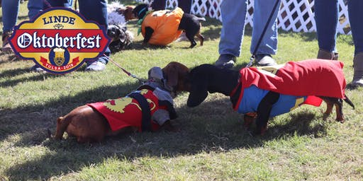 Dachshund Dash Race and Costume Parade 2019 Presented by Woodland West Animal Hospital and Pet Resort