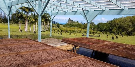 Cacao Farm Tour & Chocolate Tasting (Japanese) tickets