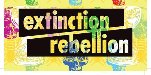 Extinction Rebellion Talk: Heading for extinction and what to do about it?