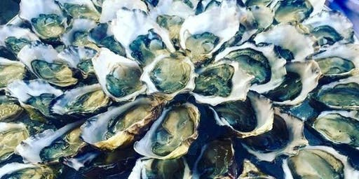 Shuck Yeah! National Oyster Day