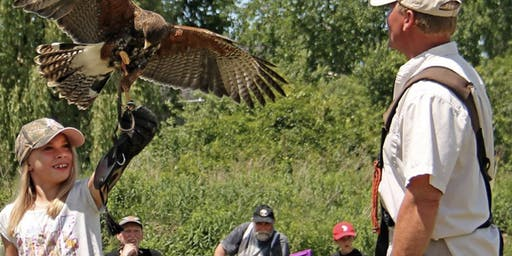 Birds of Prey Returns to Gamiing, with Matt Lieberknecht, Master Falconer
