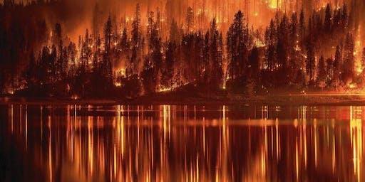 Fire's American Century