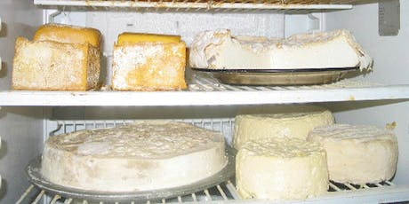 Cheese, Sourdough & Fermented Foods Workshops - Samford 24th August tickets