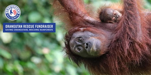 ORANGUTAN RESCUE and REFORESTATION FUNDRAISER