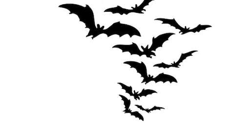 Bat Talk and Walk