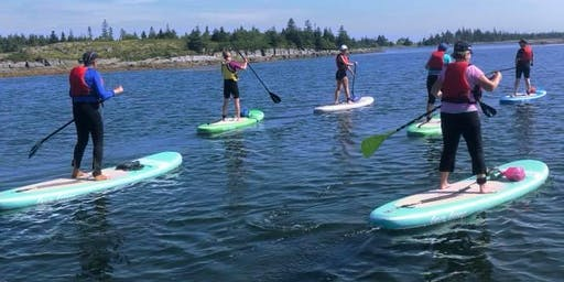 Women's Stand Up Paddle Boarding Trip (St. Margarets Bay)