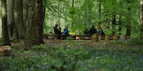Landscapes of Change Retreat & Constellations Workshop - 'Harvesting' tickets