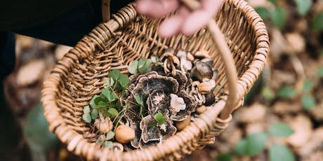 HWED Hackney Wick Food Foraging tickets