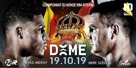 CHAMPIONNAT DU MONDE WBA DES POIDS LOURDS-LEGERS (INTERIM) billets