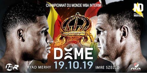 CHAMPIONNAT DU MONDE WBA DES POIDS LOURDS-LEGERS (INTERIM)