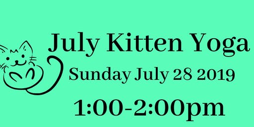 July 2019 Kitten Yoga!