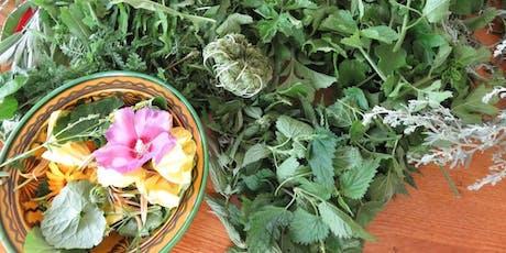 Atelier de cueillette et cuisine de plantes sauvages billets