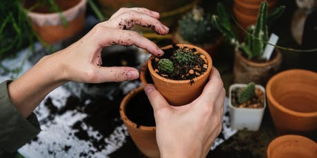 Living with Plants: An Intro to Plant Therapy tickets
