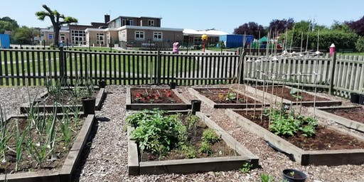 Green Gym at Rolleston Primary School