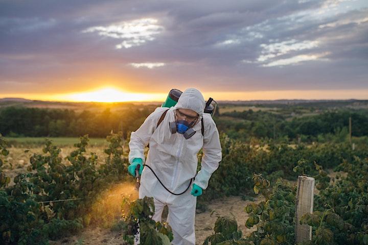 Imagen de Curso de Seguridad Ocupacional en la Empresa Agropecuaria