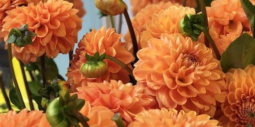 Fall Hues and Sippin' Brews