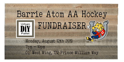 Barrie Atom AA Hockey - Fundraiser