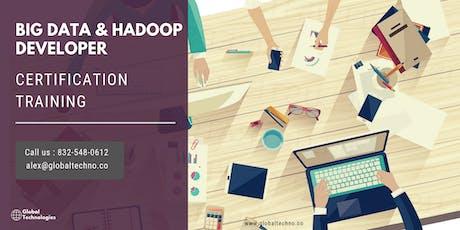 Big Data and Hadoop Developer Certification Training in Cedar Rapids, IA tickets