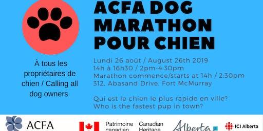 ACFA Dog Marathon pour chien