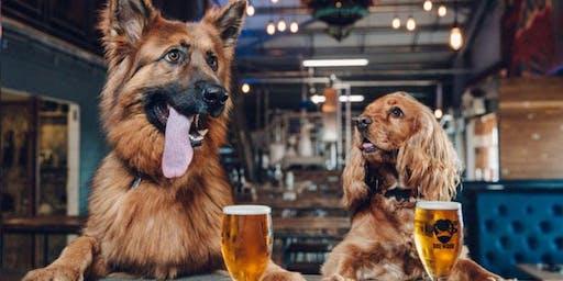 Grace Dog Training & Behavior Brewery Talks