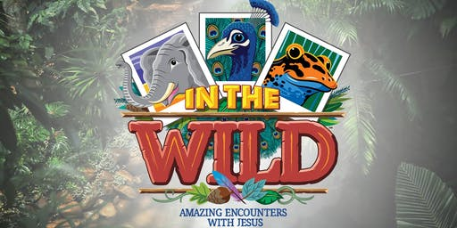 In the Wild VBS