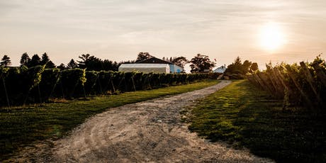 Inaugural Vine Dinner: Dine Amongst the Vines tickets