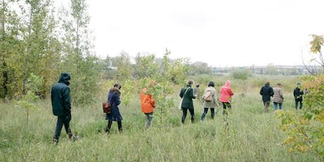 Inglewood Bird Sanctuary Edible and Medicinal Plant Walk tickets