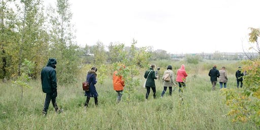Inglewood Bird Sanctuary Edible and Medicinal Plant Walk
